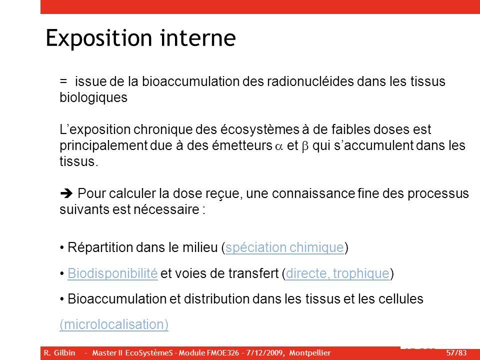 R. Gilbin - Master II EcoSystèmeS - Module FMOE326 – 7/12/2009, Montpellier 57/83 Exposition interne = issue de la bioaccumulation des radionucléides