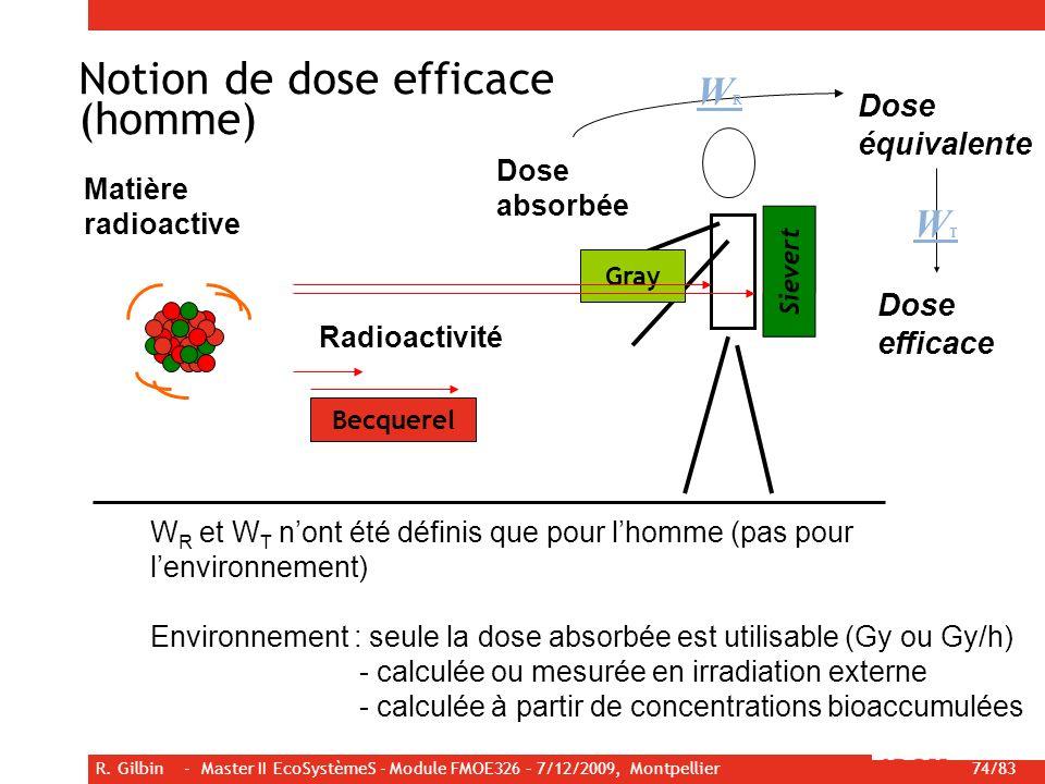 R. Gilbin - Master II EcoSystèmeS - Module FMOE326 – 7/12/2009, Montpellier 74/83 Becquerel Gray Sievert Matière radioactive Radioactivité W R et W T