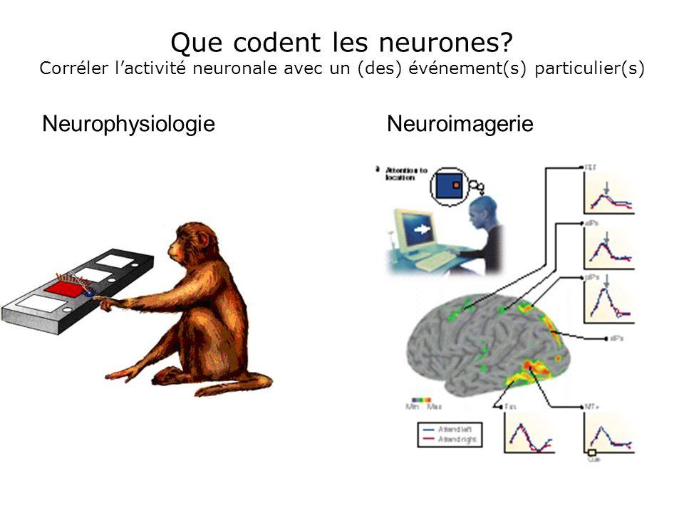 5. De voir à agir: le problème de la dissociation des processus neuronaux Un geste simple, des processus neuronaux complexes: Attention Motivation Mém
