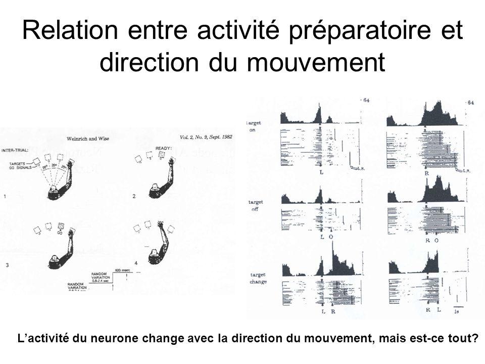 Sakata et al. (voir Jeannerod et al. 1995) Dissociation des réponses sensorielle et motrice Exemple: neurones de laire AIP Commentaires: A.Le neurone