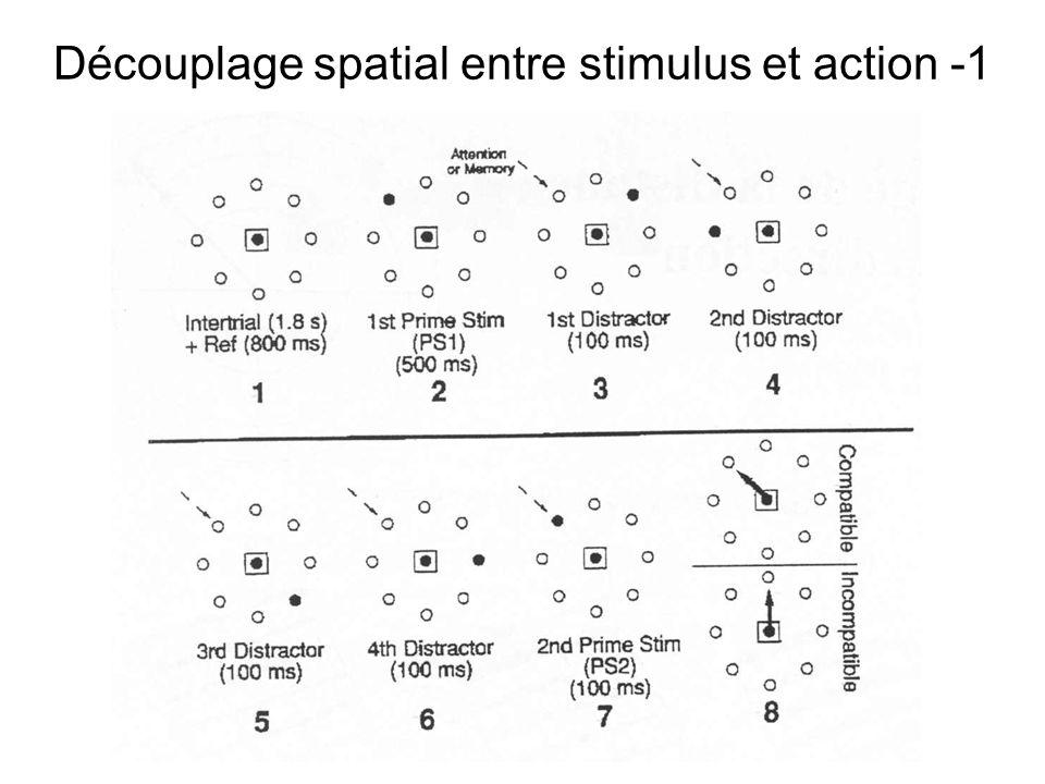 Relation entre activité préparatoire et direction du mouvement Lactivité du neurone change avec la direction du mouvement, mais est-ce tout?