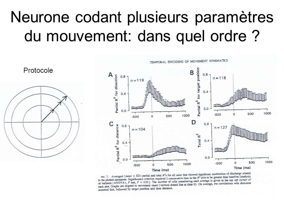 Neurone codant plusieurs paramètres du mouvement: dans quel ordre ? Protocole