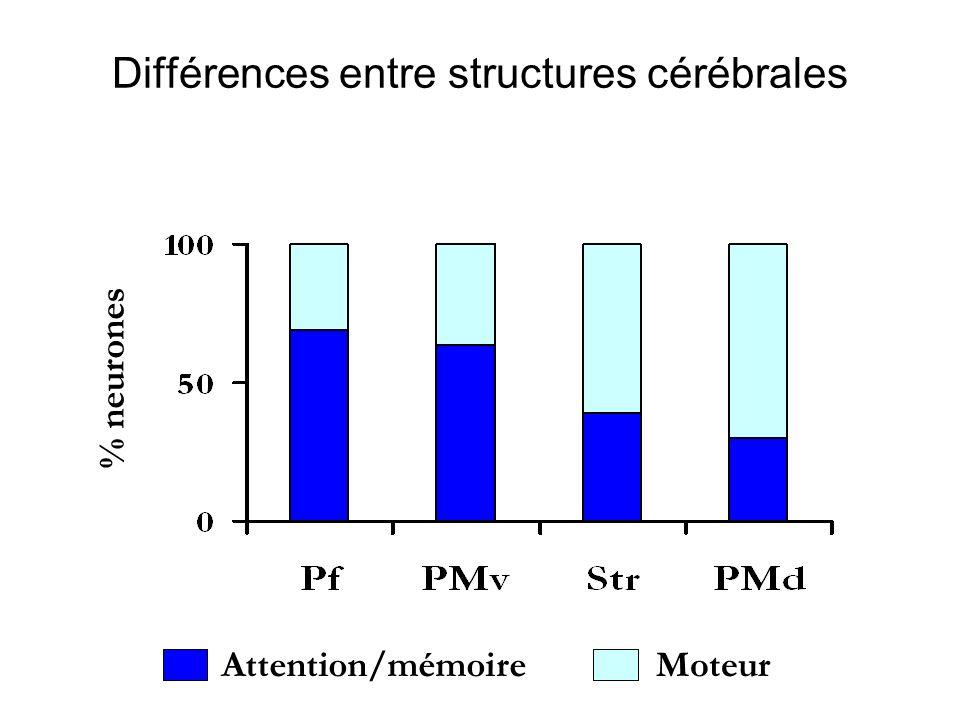 Exemple de propriétés complexes + + SAM MIC