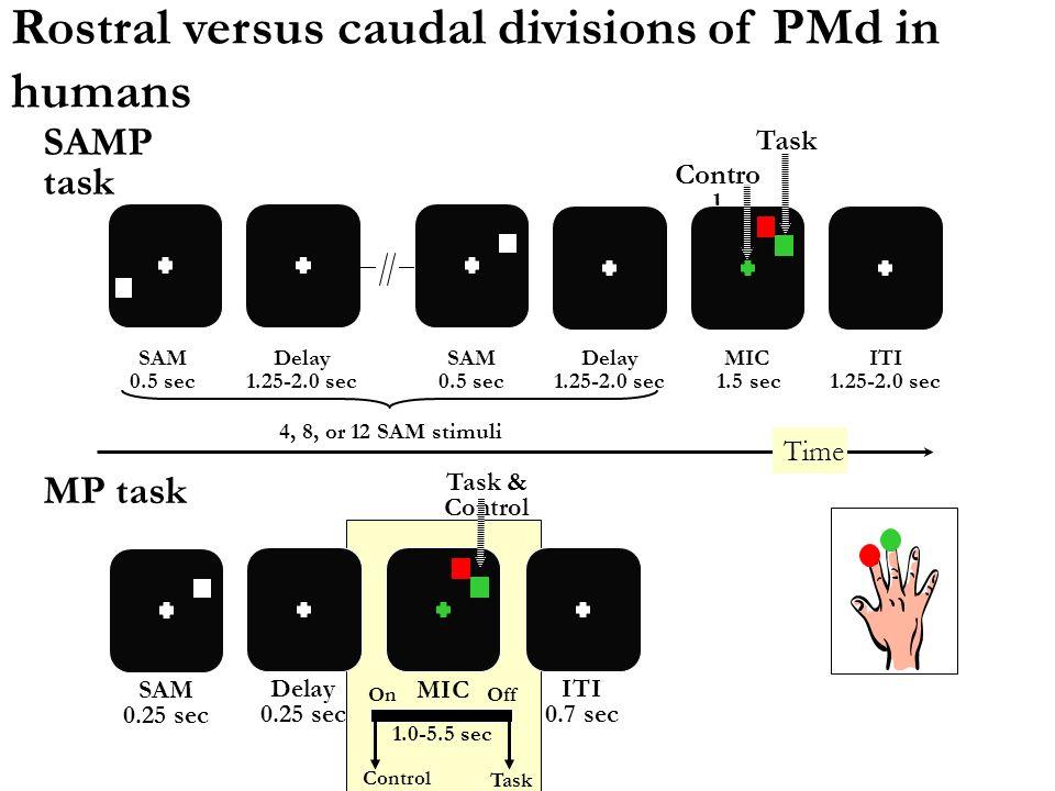 0 20 40 60 80 100 RostralInterm. Caudal % neurones A = P P > A A > P Subdivisions rostrale et caudale de PMd chez le singe PMdr M1 Pf PMdc