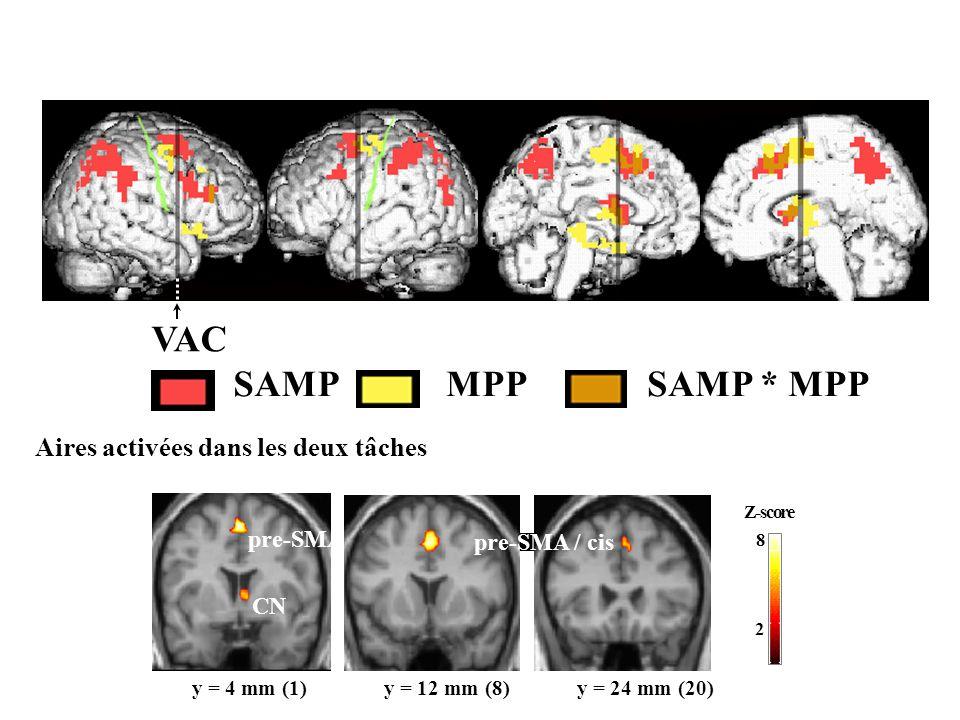 Rostral versus caudal divisions of PMd in humans SAM 0.25 sec MP task MIC Delay 0.25 sec ITI 0.7 sec 1.0-5.5 sec Control Task SAM 0.5 sec ITI 1.25-2.0