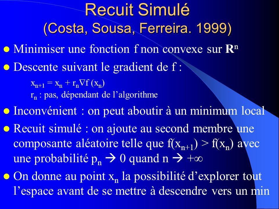 Recuit Simulé (Costa, Sousa, Ferreira. 1999) Minimiser une fonction f non convexe sur R n Descente suivant le gradient de f : x n+1 = x n + r n f (x n