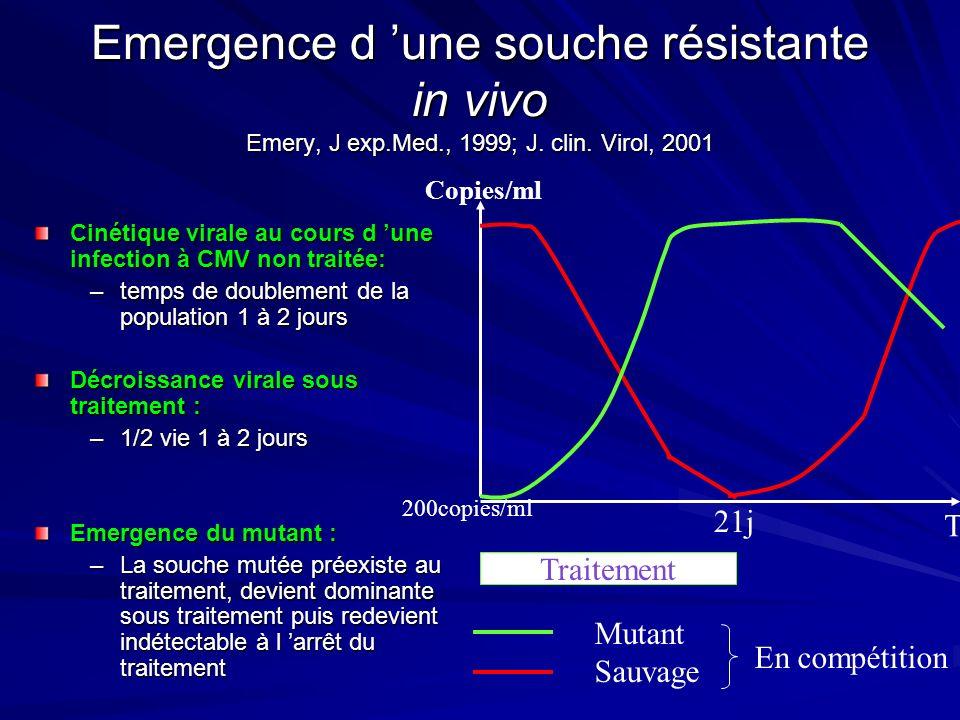 Emergence d une souche résistante in vivo Emery, J exp.Med., 1999; J. clin. Virol, 2001 Cinétique virale au cours d une infection à CMV non traitée: –