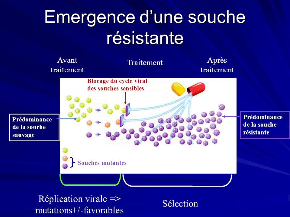 Emergence dune souche résistante Avant traitement Traitement Après traitement Souche sauvage (Cycle viral normal) Souches mutantes Blocage du cycle vi