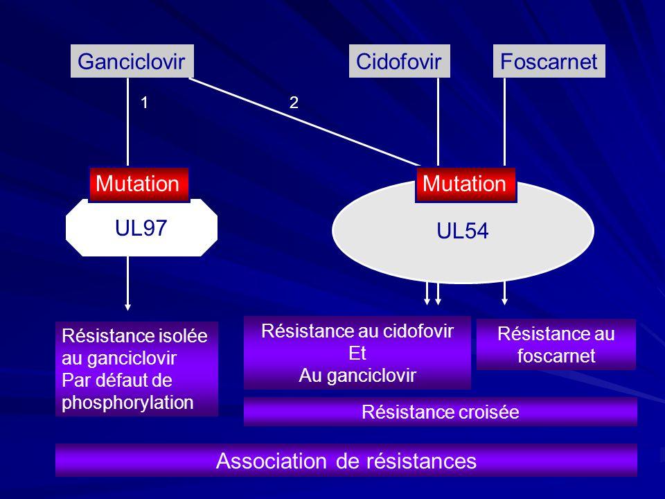 GanciclovirCidofovirFoscarnet Résistance isolée au ganciclovir Par défaut de phosphorylation UL97 Résistance au cidofovir Et Au ganciclovir Résistance