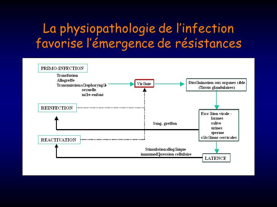 Les leçons du VIH : Incidence de la résistance Traitement cumulé Ganciclovir 1 valganciclovir 2 cidofovir 3 Foscarnet 3-4 3mois7%2%29%0-9% 6mois12%7%13-26% 9 mois27%9%24-37% 12 mois27%13%37% 1 : Jabs et al, JID 1998; 2 : Boivin et al., JID 2001; 3: Jabs et al., AAC 1998; 4 : Weinberg et al., JID 2003