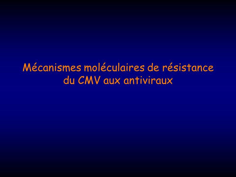 Mutations : 19 patients -cohorte de Chicago (Lurain, JID, 2002) Résistance confirmée par le phénotype UL97 : 19/19 (100%) des patients ->codons 460 à 607 UL54 : 6/19 (30%) ->Résistance croisée au cidofovir (5/6) ->résistance associée au foscarnet (1/6, traité par foscarnet) Délai d apparition des mutations : UL97 : 5,5 à 36 mois UL54 : 5 à 13 mois, toujours après UL97