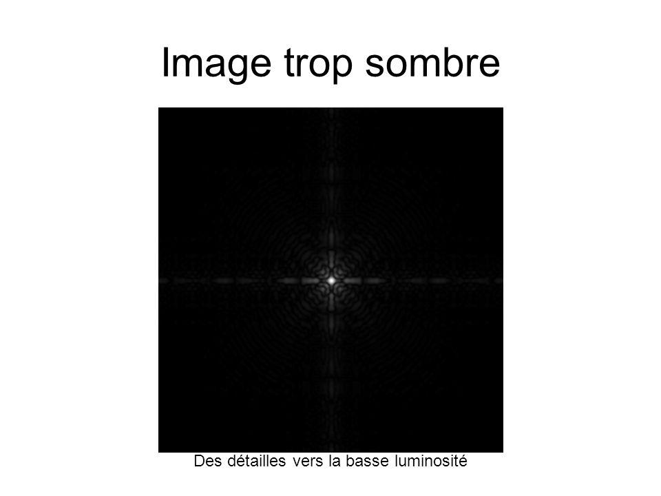 Image trop sombre Des détailles vers la basse luminosité