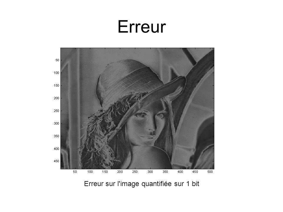 Erreur Erreur sur l image quantifiée sur 1 bit