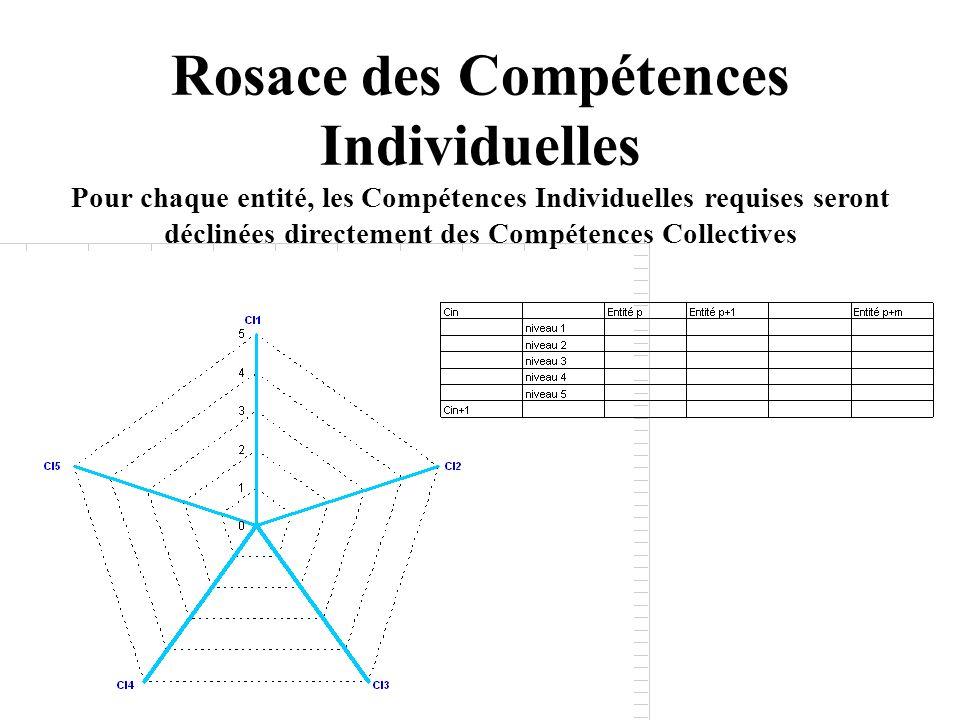 Rosace des Compétences Individuelles Pour chaque entité, les Compétences Individuelles requises seront déclinées directement des Compétences Collectiv