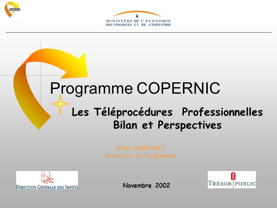 Programme COPERNIC Les Téléprocédures Professionnelles Bilan et Perspectives Gilles GRAPINET Directeur du Programme Novembre 2002