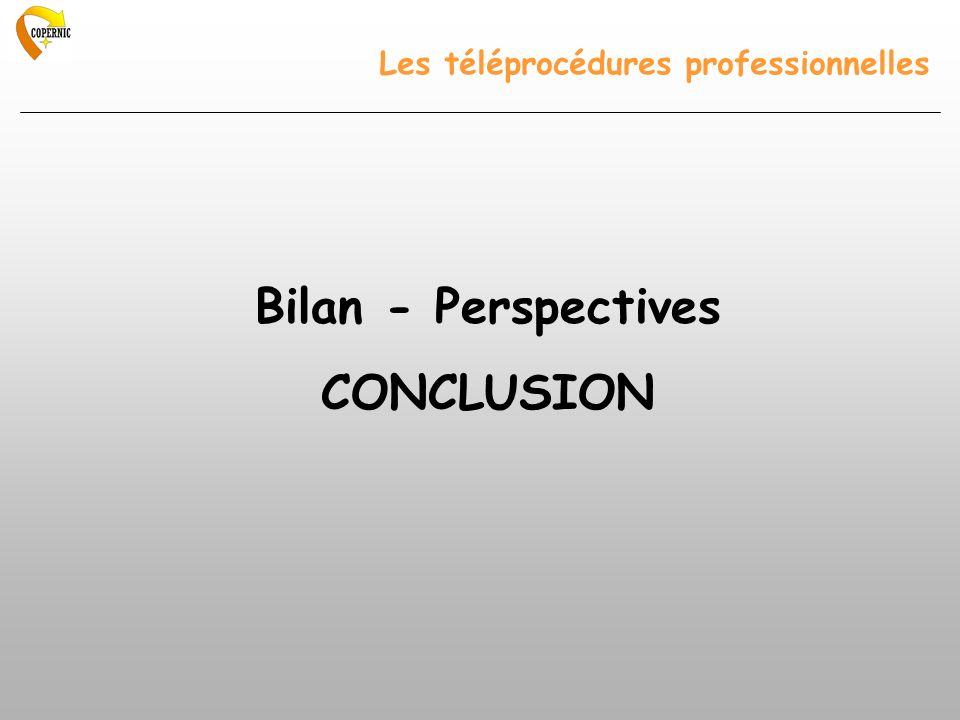 Les téléprocédures professionnelles Bilan - Perspectives CONCLUSION