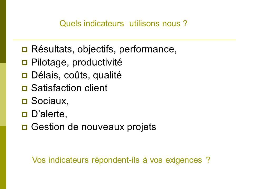 Quels indicateurs utilisons nous ? Résultats, objectifs, performance, Pilotage, productivité Délais, coûts, qualité Satisfaction client Sociaux, Daler