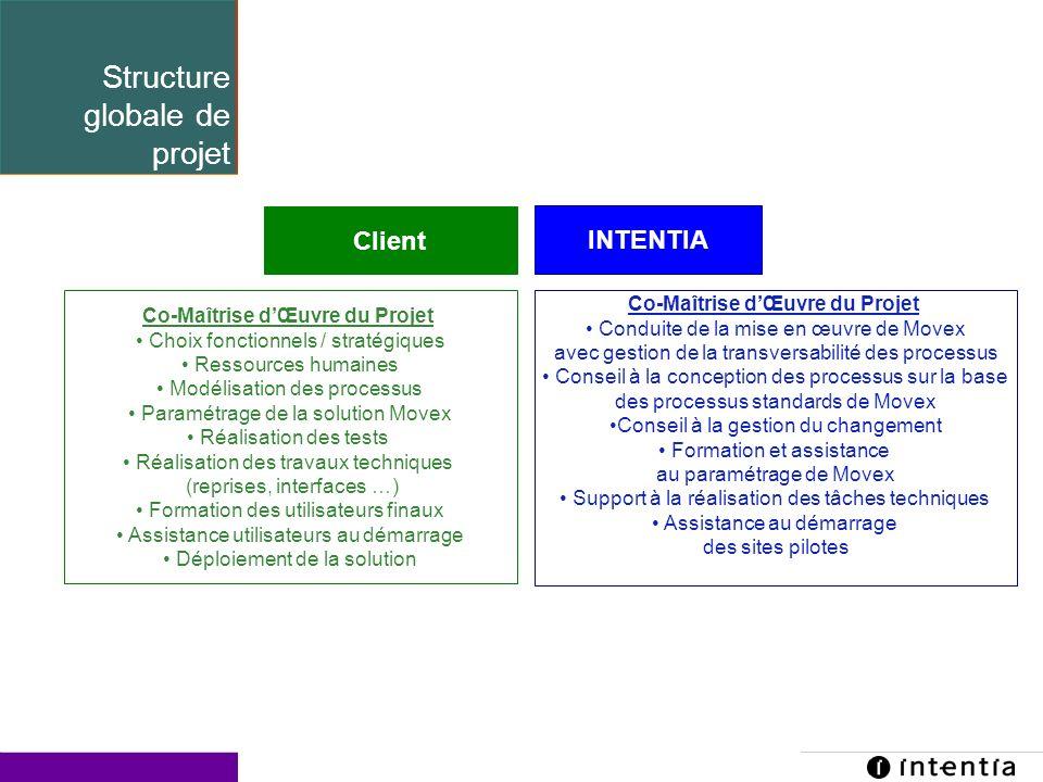 Template ver.1.2 / 21 Structure globale de projet Client INTENTIA Co-Maîtrise dŒuvre du Projet Choix fonctionnels / stratégiques Ressources humaines M