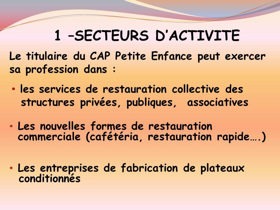 SOMMAIRE 1. Les secteurs dactivité 3. Les fonction assurées 4. Les activités réalisées 5.Les compétences 6.Les savoirs associés 7.Les périodes de form