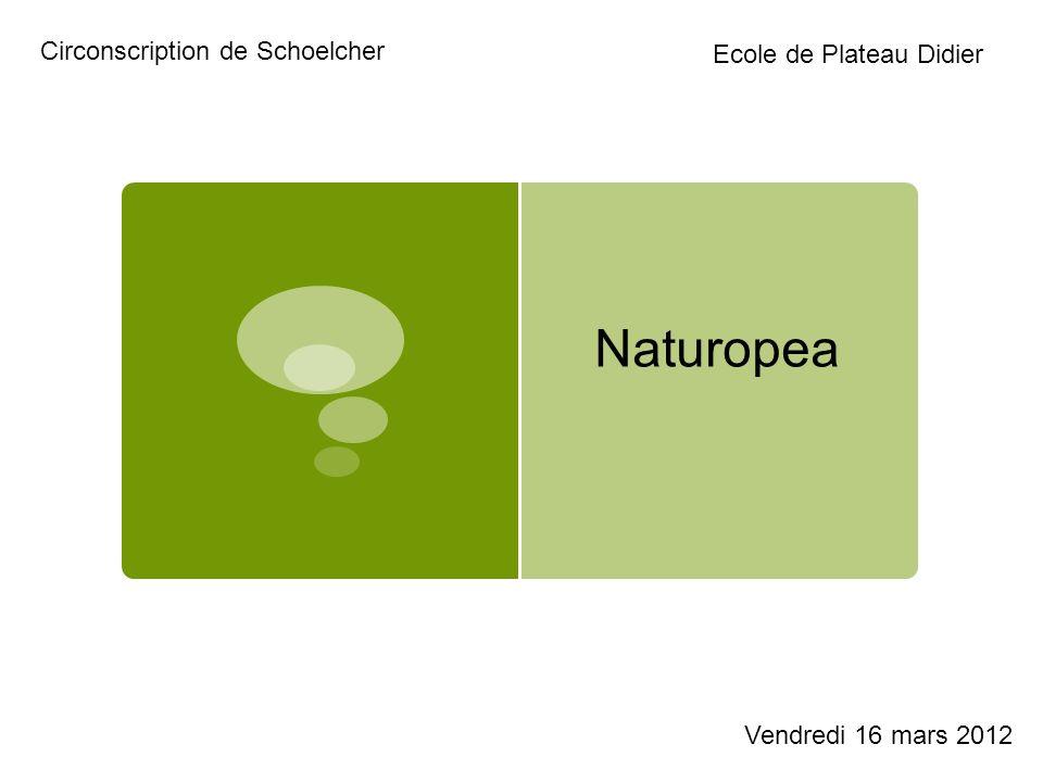 Naturopea Circonscription de Schoelcher Ecole de Plateau Didier Vendredi 16 mars 2012