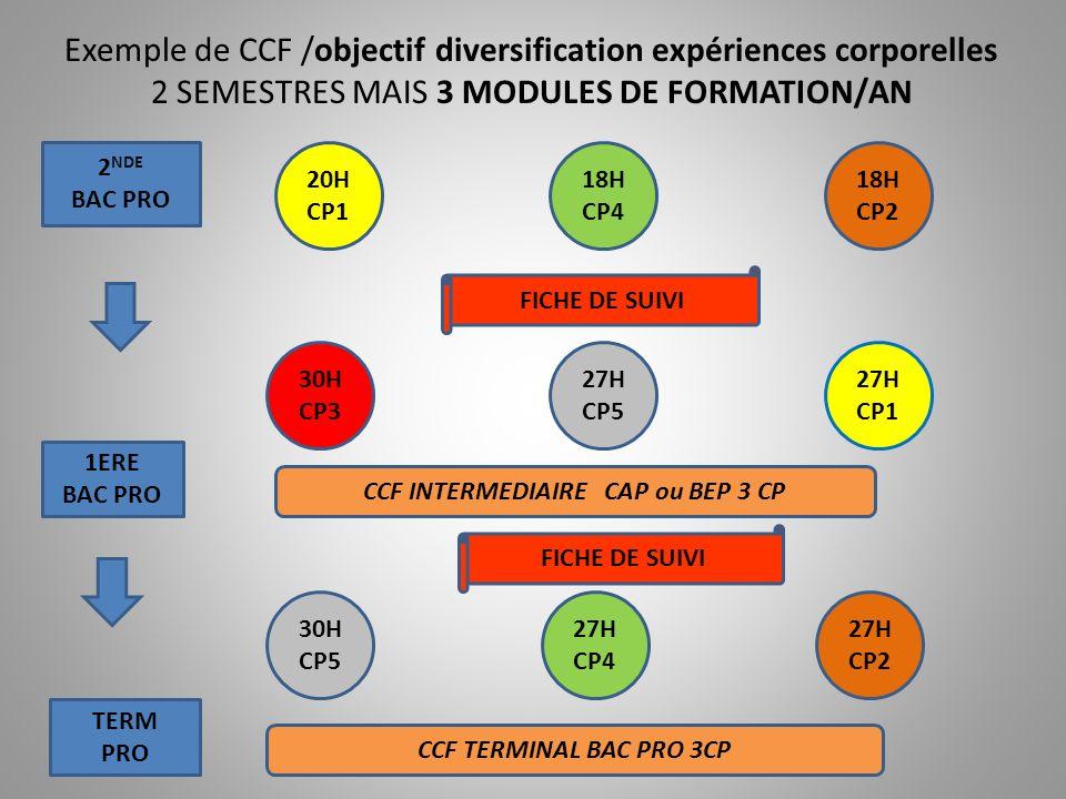 NECESSITE FICHE DE SUIVI APRES LE COLLEGE 2 NDE VOIE GENERALE ET TECHNOLOGIQUE 2 NDE BAC PRO 1ERE ANNEE CAP 1ERE GENERAL 1ERE TECHNO 1ERE BAC PRO 2 NDE CAP DIPLÔME INTERMEDIAIRE CAP ou BEP DIPLÔME FINAL CAP TERM GENERAL TERM TECHNO TERM PRO DIPLÔME TERMINAL BAC GENERAL OU TECHNO DIPLÔME TERMINAL BAC PRO ENSEIGNEMENT SUPERIEURINSERTION PROFESSIONNELLE