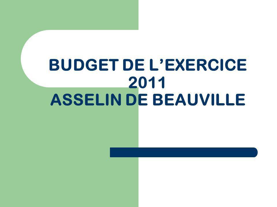 BUDGET DE LEXERCICE 2011 ASSELIN DE BEAUVILLE