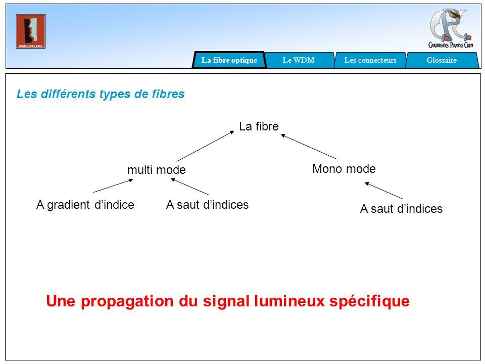 Les différents types de fibres La fibre multi mode Mono mode A gradient dindice A saut dindices Une propagation du signal lumineux spécifique A saut d