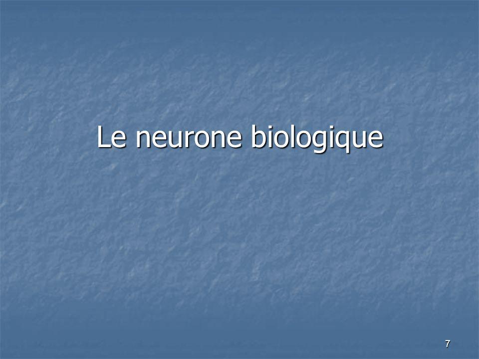 7 Le neurone biologique