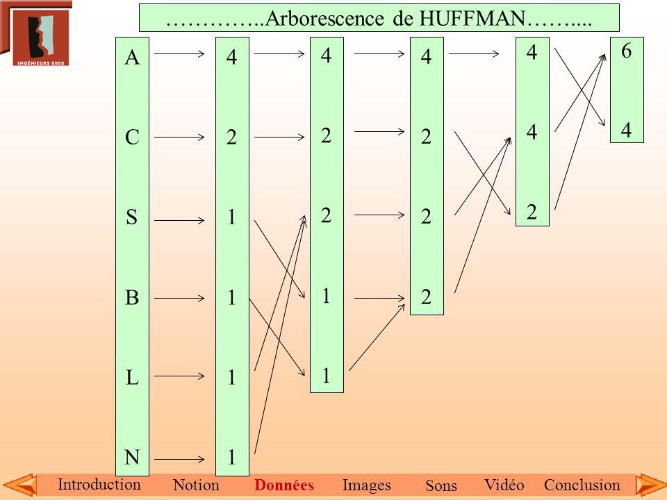 Introduction NotionDonnéesImagesConclusionVidéo Sons ACSBLNACSBLN 421111421111 4221142211 42224222 442442 6464 …………..Arborescence de HUFFMAN……....