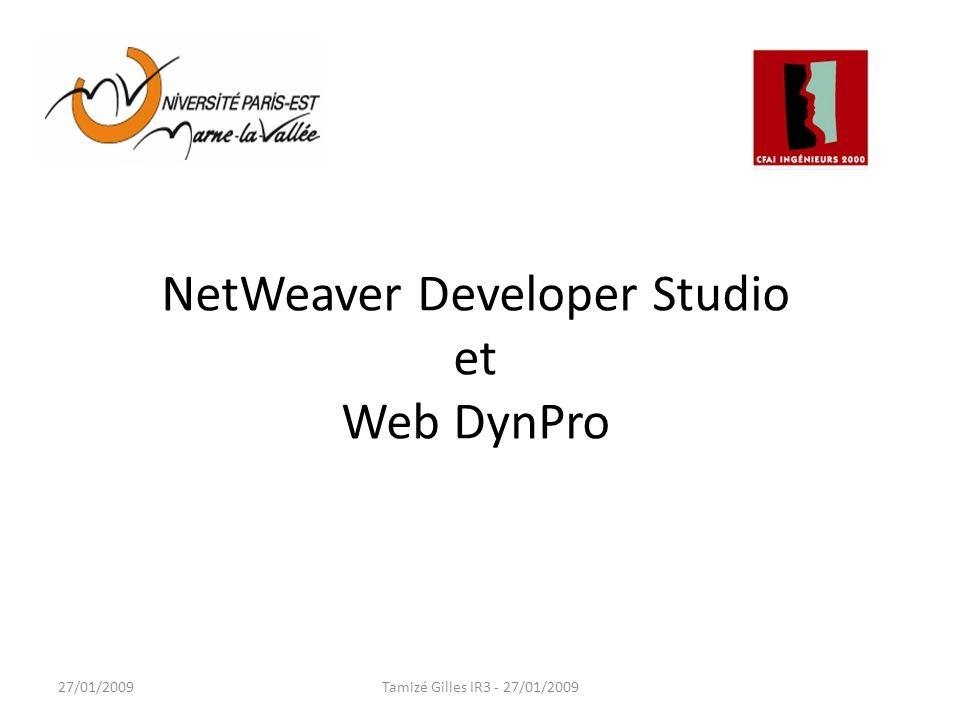 Sommaire 1.NetWeaver Developer Studio 2.Web DynPro 3.Projet Web DynPro avec NWDS 3.1.Model View Controller 3.2.View Controller / Custom Controller 3.3.Développement Normal 3.4.Développement Dynamique 3.5.Récupérer des fonctions BAPI (ABAP) 3.6.Notion de OnAction 3.7.Comment gérer le passage dune vue à une autre 3.8.Internationalisation 4.Démonstration