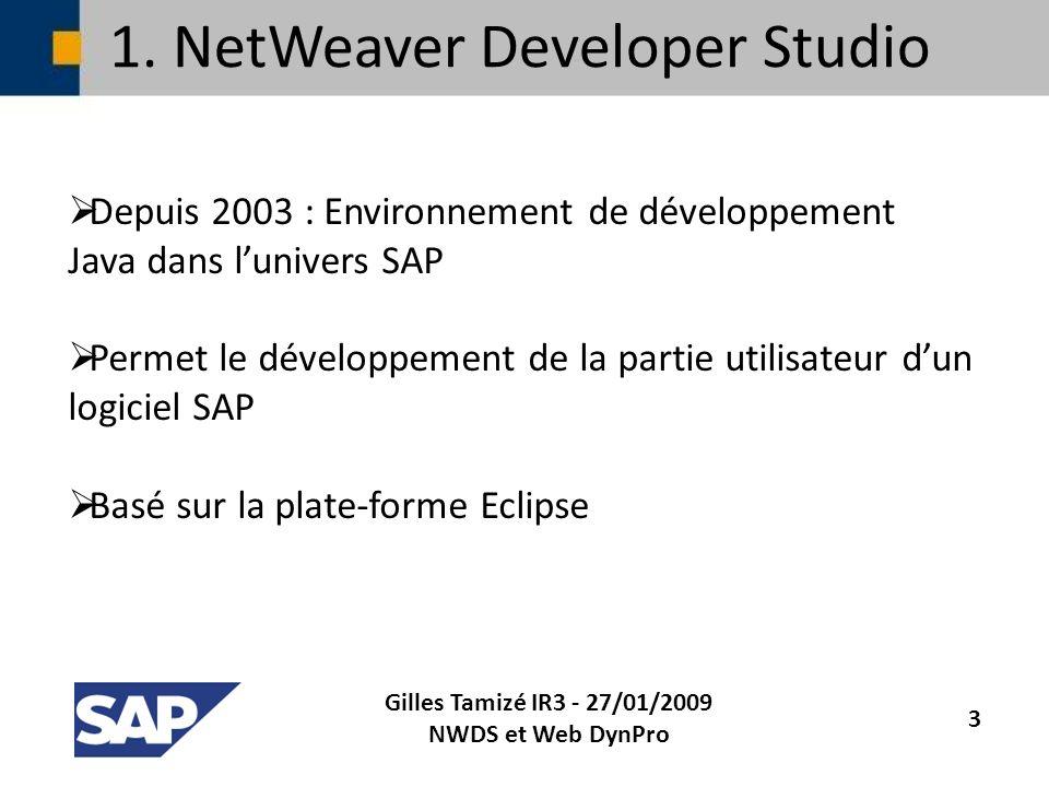 1. NetWeaver Developer Studio Depuis 2003 : Environnement de développement Java dans lunivers SAP Permet le développement de la partie utilisateur dun