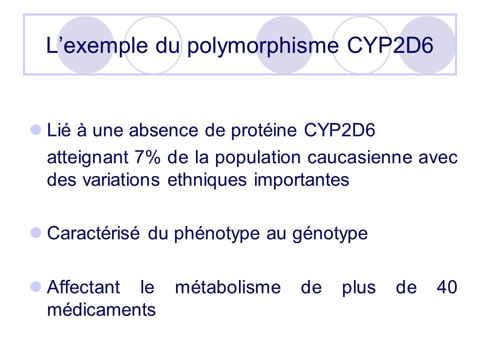 Lexemple du polymorphisme CYP2D6 Lié à une absence de protéine CYP2D6 atteignant 7% de la population caucasienne avec des variations ethniques importa