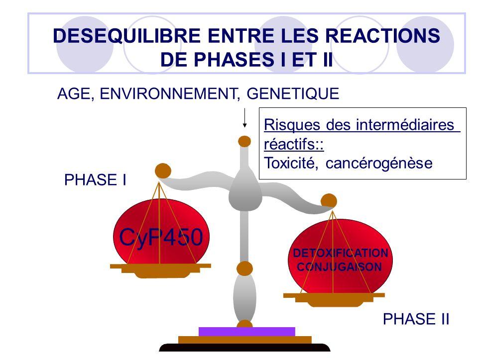 DESEQUILIBRE ENTRE LES REACTIONS DE PHASES I ET II CyP450 DETOXIFICATION CONJUGAISON PHASE I PHASE II AGE, ENVIRONNEMENT, GENETIQUE Risques des interm
