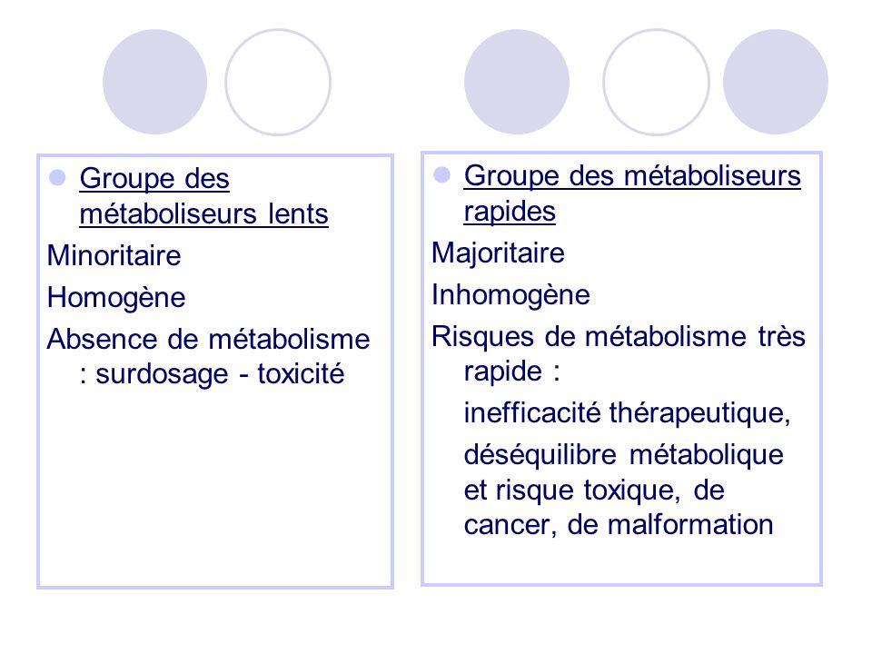Groupe des métaboliseurs lents Minoritaire Homogène Absence de métabolisme : surdosage - toxicité Groupe des métaboliseurs rapides Majoritaire Inhomogène Risques de métabolisme très rapide : inefficacité thérapeutique, déséquilibre métabolique et risque toxique, de cancer, de malformation
