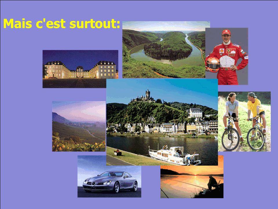 © Cers und Partner 2004 5 Mais c est surtout: