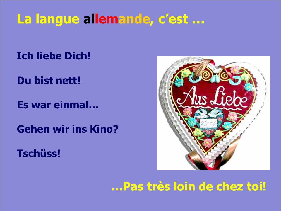 © Cers und Partner 2004 8 La langue allemande, cest … Ich liebe Dich.