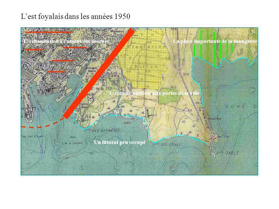 Lurbanisation à lassaut des mornes Lactivité agricole aux portes de la ville Un littoral peu occupé Lest foyalais dans les années 1950 La mangrove occ