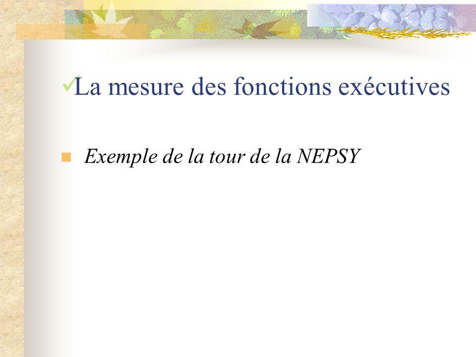 La mesure des fonctions exécutives Exemple de la tour de la NEPSY