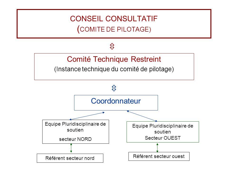 CONSEIL CONSULTATIF ( COMITE DE PILOTAGE) Comité Technique Restreint (Instance technique du comité de pilotage) Coordonnateur Equipe Pluridisciplinair