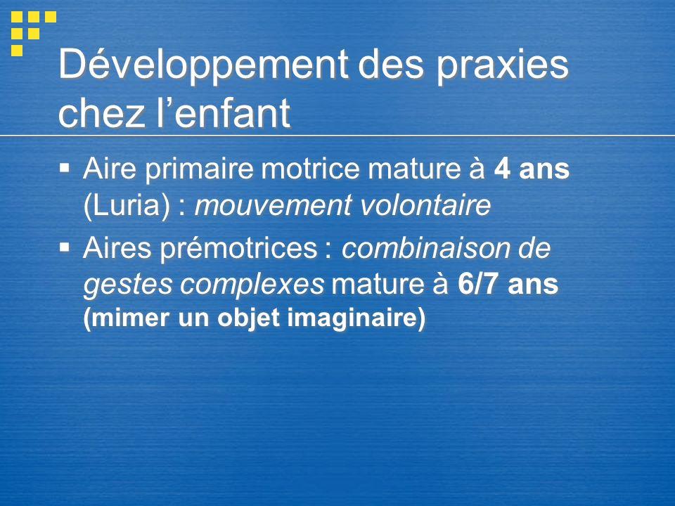 Développement des praxies chez lenfant Aire primaire motrice mature à 4 ans (Luria) : mouvement volontaire Aires prémotrices : combinaison de gestes c