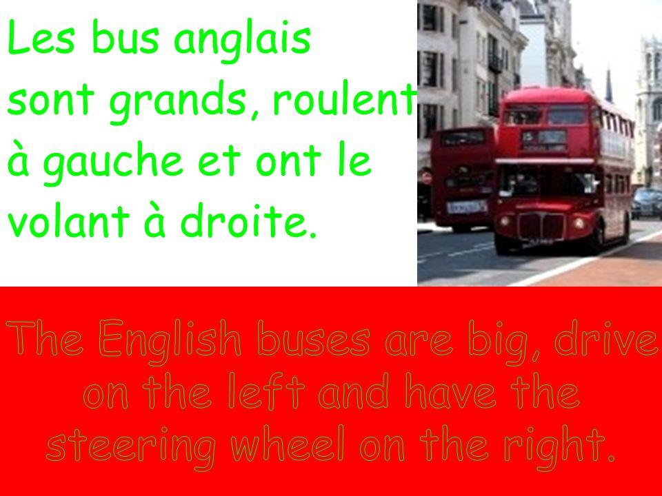 Les bus anglais sont grands, roulent à gauche et ont le volant à droite.