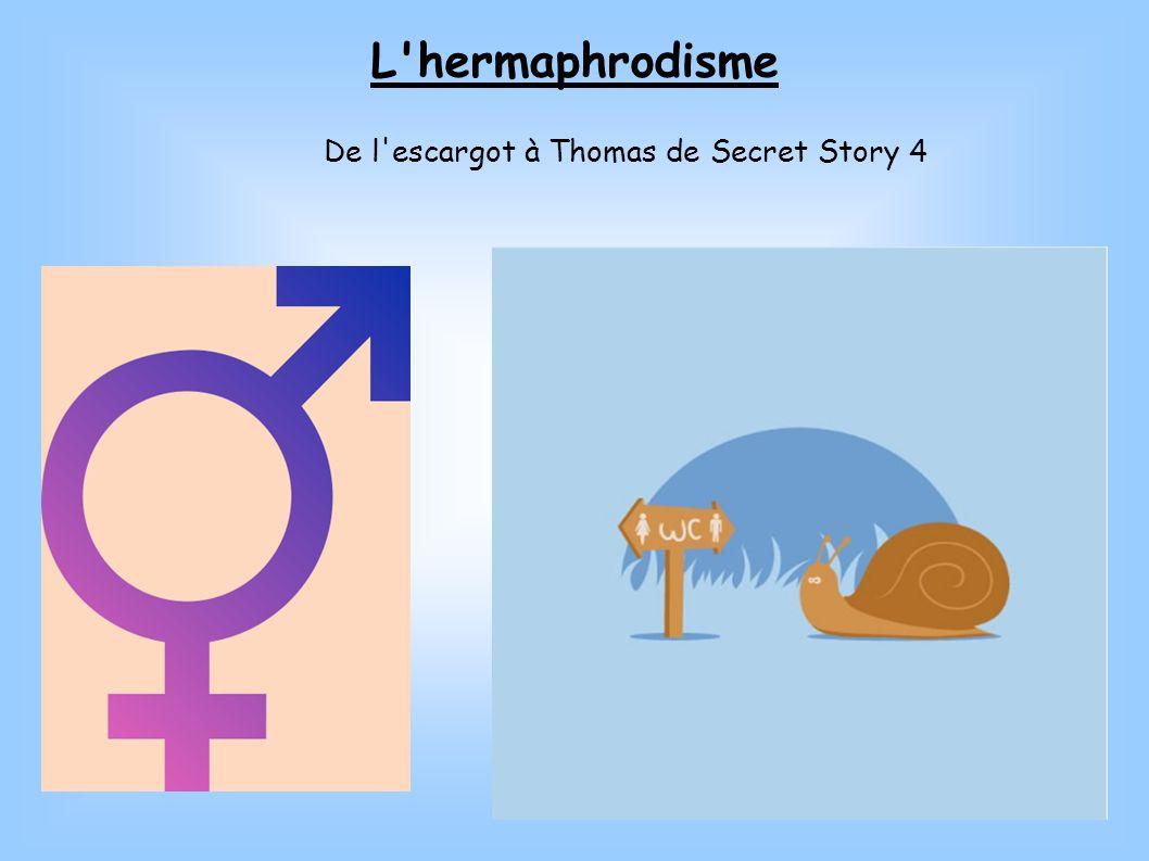L'hermaphrodisme De l'escargot à Thomas de Secret Story 4