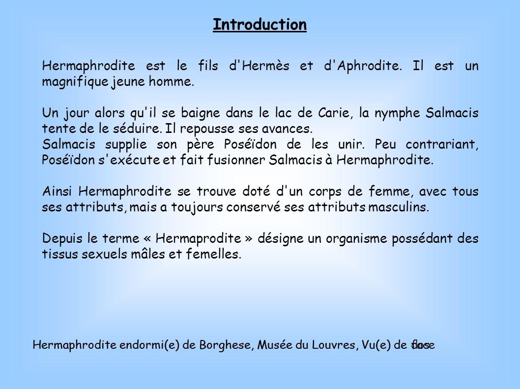 Hermaphrodite endormi(e) de Borghese, Musée du Louvres, Vu(e) de dos Introduction Hermaphrodite est le fils d'Hermès et d'Aphrodite. Il est un magnifi