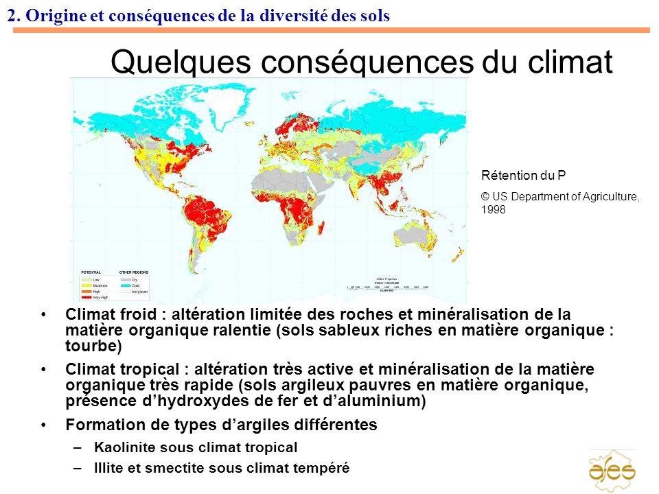 2. Origine et conséquences de la diversité des sols Quelques conséquences du climat Climat froid : altération limitée des roches et minéralisation de