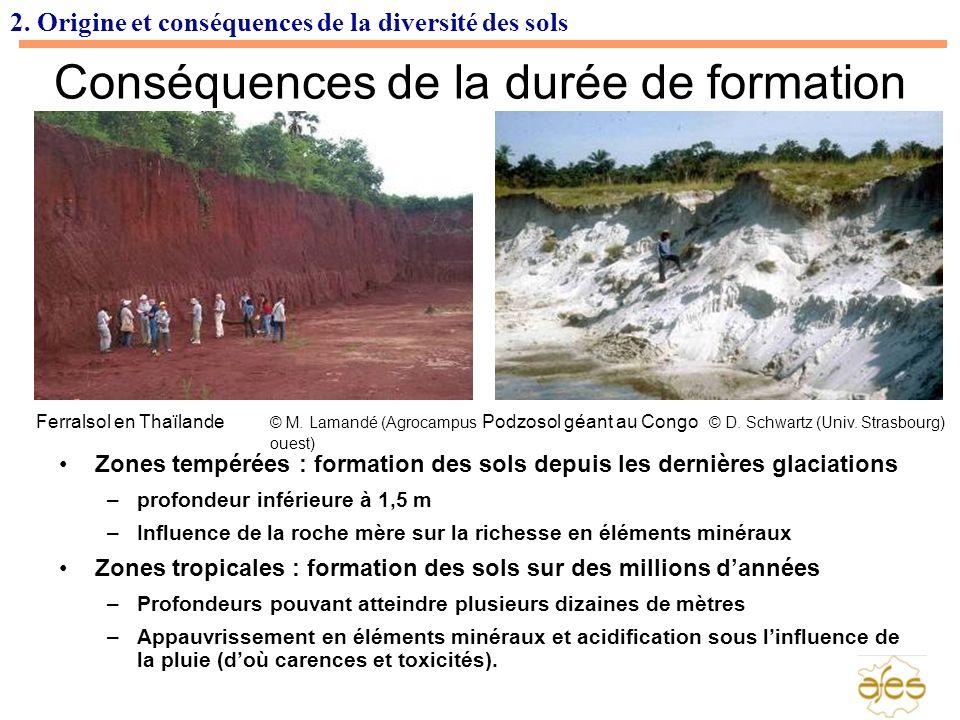 2. Origine et conséquences de la diversité des sols Conséquences de la durée de formation Zones tempérées : formation des sols depuis les dernières gl