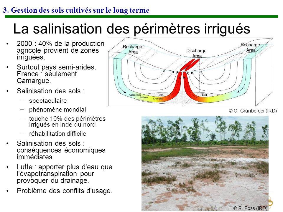 3. Gestion des sols cultivés sur le long terme La salinisation des périmètres irrigués 2000 : 40% de la production agricole provient de zones irriguée