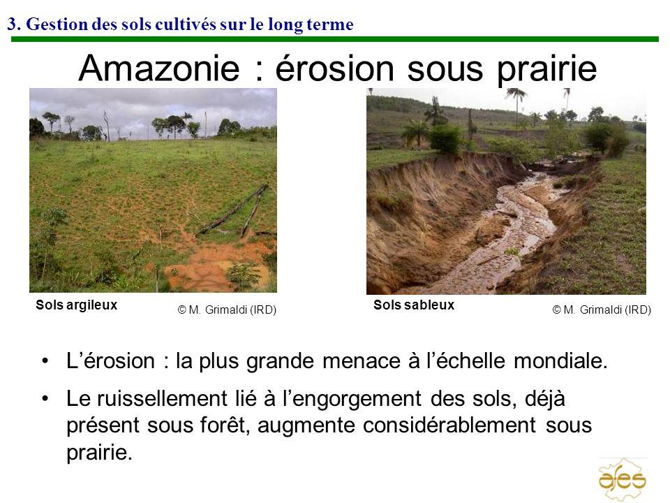 3. Gestion des sols cultivés sur le long terme Amazonie : érosion sous prairie Lérosion : la plus grande menace à léchelle mondiale. Le ruissellement
