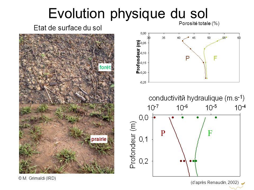 Etat de surface du sol forêt prairie FP Evolution physique du sol (daprès Renaudin, 2002) © M. Grimaldi (IRD) Porosité totale (%) FP © M. Grimaldi