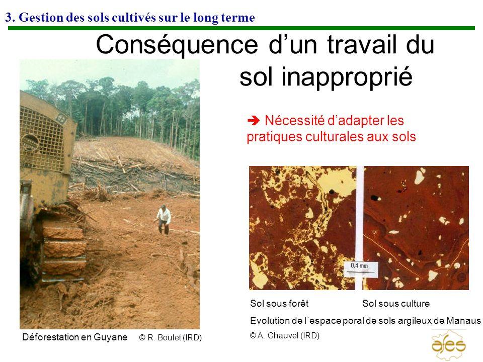 3. Gestion des sols cultivés sur le long terme Conséquence dun travail du sol inapproprié Sol sous forêt Sol sous culture Evolution de l´espace poral