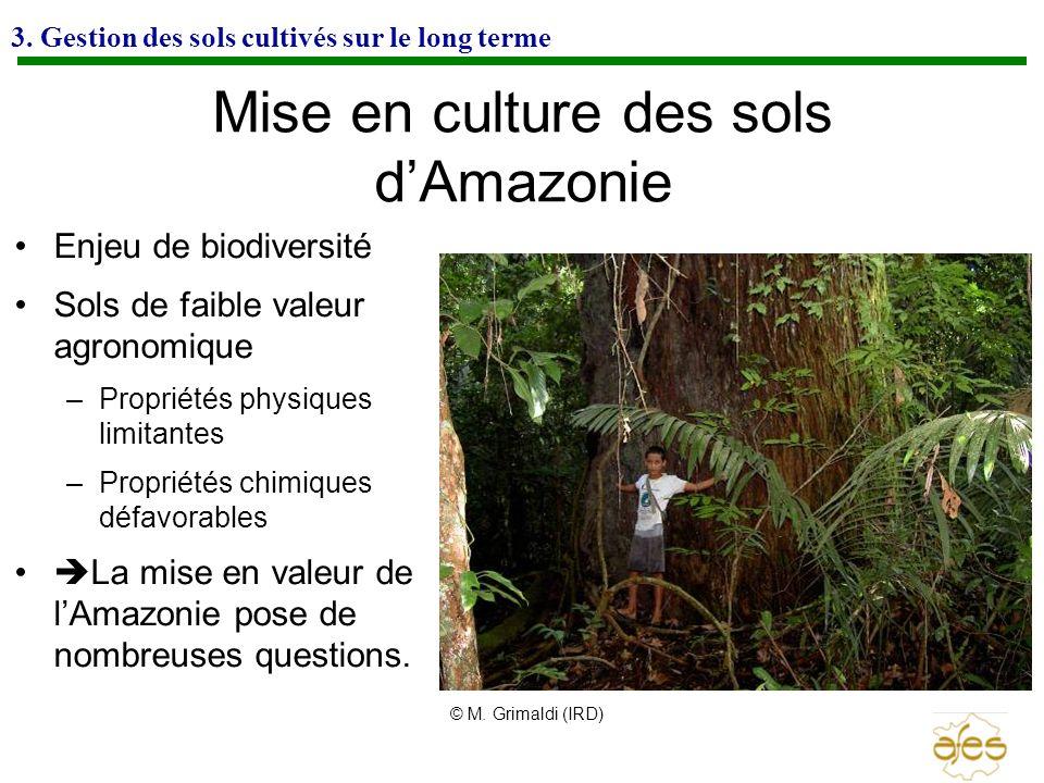 3. Gestion des sols cultivés sur le long terme Mise en culture des sols dAmazonie Enjeu de biodiversité Sols de faible valeur agronomique –Propriétés
